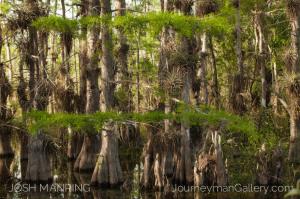 Josh Manring Photographer Decor Wall Arts - Best Sellers-37