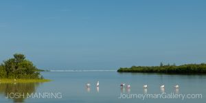 Josh Manring Journeyman Photography Gallery Naples Florida-22.jpg