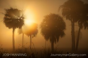 Josh Manring Journeyman Photography Gallery Naples Florida-32.jpg